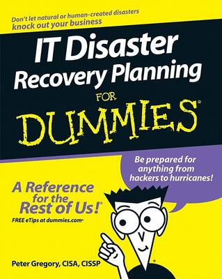 IT Disaster Recovery Planning For Dummies (BOK)