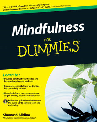 Mindfulness For Dummies (BOK)