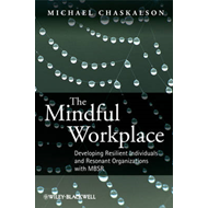 Mindful Workplace (BOK)