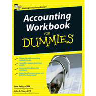 Accounting Workbook For Dummies (BOK)
