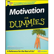 Motivation For Dummies (BOK)