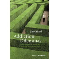 Addiction Dilemmas: Family Experiences from Literature and Research and Their Lessons for Practice (BOK)