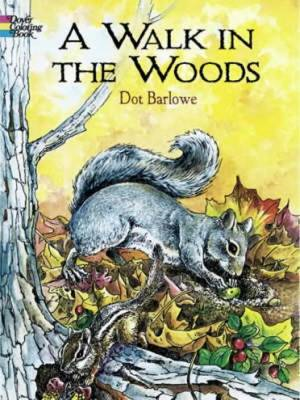 Walk in the Woods Coloring Book (BOK)