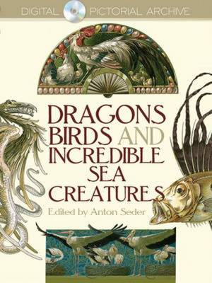 Dragons, Birds and Incredible Sea Creatures (BOK)