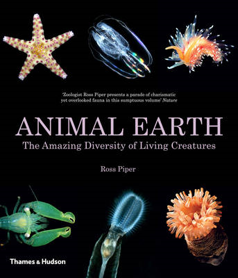 Animal Earth (BOK)