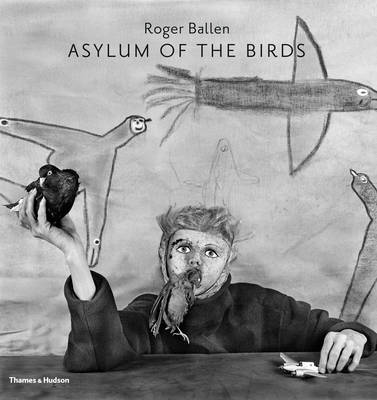 Asylum of the Birds (BOK)