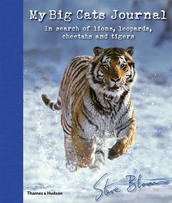 My Big Cats Journal (BOK)