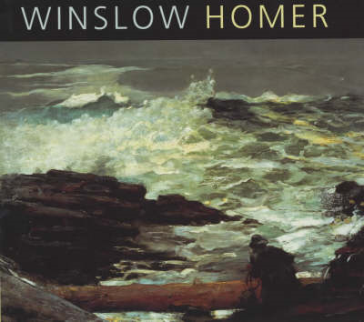 Winslow Homer: The Nature of Observation (BOK)