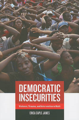 Democratic Insecurities (BOK)