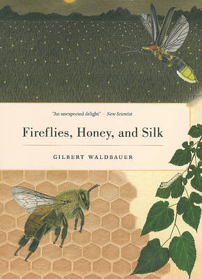 Fireflies, Honey, and Silk (BOK)