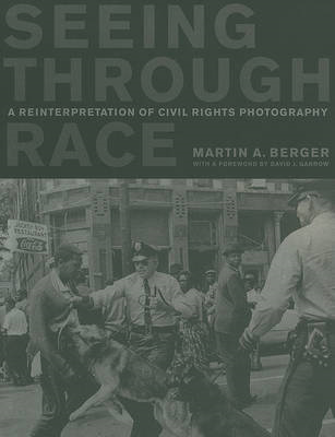 Seeing through Race (BOK)