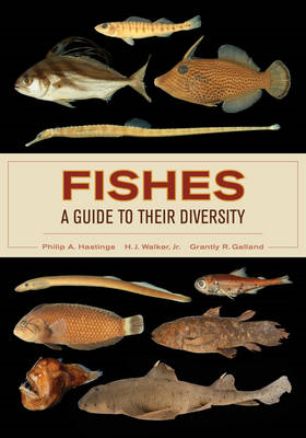 Fishes: A Guide to Their Diversity (BOK)