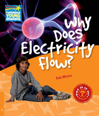 Why Does Electricity Flow? Level 6 Factbook (BOK)