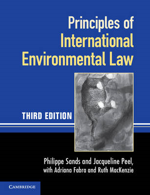 Principles of International Environmental Law (BOK)