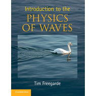 Introduction to the Physics of Waves (BOK)