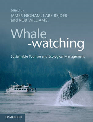 Whale-watching (BOK)