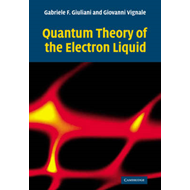 Quantum Theory of the Electron Liquid (BOK)