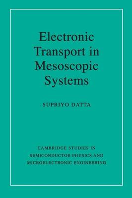 Electronic Transport in Mesoscopic Systems (BOK)