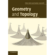 Geometry and Topology (BOK)