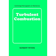 Turbulent Combustion (BOK)