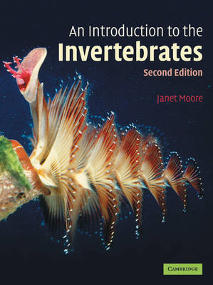 Introduction to the Invertebrates (BOK)