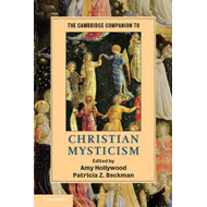 Cambridge Companion to Christian Mysticism (BOK)
