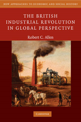 British Industrial Revolution in Global Perspective (BOK)