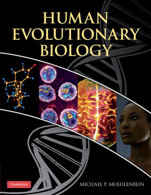 Human Evolutionary Biology (BOK)