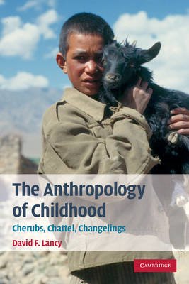 The Anthropology of Childhood: Cherubs, Chattel, Changelings (BOK)