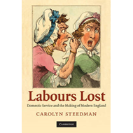 Labours Lost: Domestic Service and the Making of Modern England (BOK)