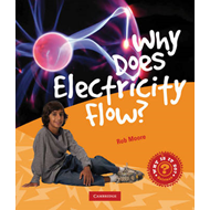 Why Does Electricity Flow? (BOK)