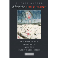 After the Holocaust: The Book of Job, Primo Levi, and the Path to Affliction (BOK)