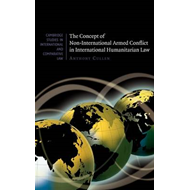 Concept of Non-International Armed Conflict in International (BOK)