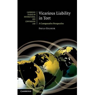 Vicarious Liability in Tort (BOK)