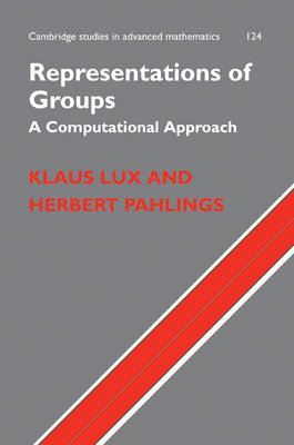 Representations of Groups: A Computational Approach (BOK)
