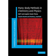 Many-Body Methods in Chemistry and Physics (BOK)