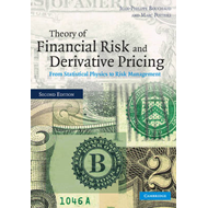 Theory of Financial Risk and Derivative Pricing (BOK)