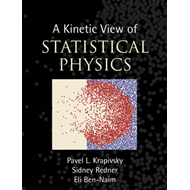 A Kinetic View of Statistical Physics (BOK)
