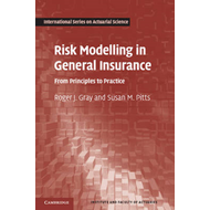 Risk Modelling in General Insurance: From Principles to Practice (BOK)