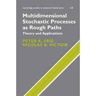 Multidimensional Stochastic Processes as Rough Paths: Theory and Applications (BOK)