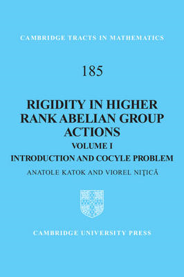 Rigidity in Higher Rank Abelian Group Actions: Volume 1, Introduction and Cocycle Problem: Volume 1 (BOK)
