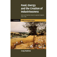 Food, Energy and the Creation of Industriousness (BOK)