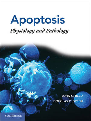 Apoptosis: Physiology and Pathology (BOK)