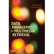 Data Management for Multimedia Retrieval (BOK)