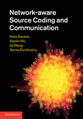 Network-aware Source Coding and Communication (BOK)