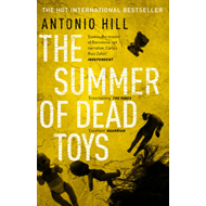 The Summer of Dead Toys (BOK)