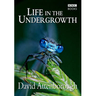 Life in the Undergrowth (BOK)