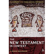 The New Testament in Context: A Literary and Theological Textbook (BOK)