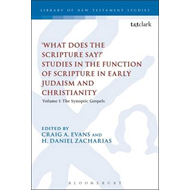 'What Does the Scripture Say?' Studies in the Function of Sc (BOK)