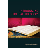 Introducing Biblical Theology (BOK)